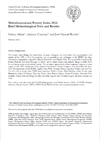 MPI 2013: Brief Methodological Note and Results